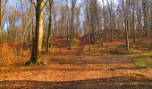 Trail Walk LONGPONT - en forêt de Retz_17_Longpont_etangs de la Ramee_AR - Photo 42