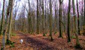 Trail Walk LONGPONT - en forêt de Retz_17_Longpont_etangs de la Ramee_AR - Photo 33
