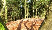 Trail Walk LONGPONT - en forêt de Retz_17_Longpont_etangs de la Ramee_AR - Photo 63