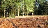 Trail Walk LONGPONT - en forêt de Retz_17_Longpont_etangs de la Ramee_AR - Photo 64