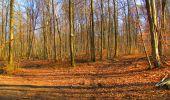 Trail Walk LONGPONT - en forêt de Retz_17_Longpont_etangs de la Ramee_AR - Photo 32