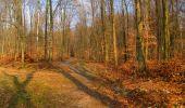 Trail Walk LONGPONT - en forêt de Retz_17_Longpont_etangs de la Ramee_AR - Photo 21