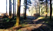Trail Walk LONGPONT - en forêt de Retz_17_Longpont_etangs de la Ramee_AR - Photo 81