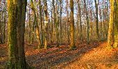 Trail Walk LONGPONT - en forêt de Retz_17_Longpont_etangs de la Ramee_AR - Photo 54