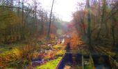 Trail Walk LONGPONT - en forêt de Retz_17_Longpont_etangs de la Ramee_AR - Photo 48