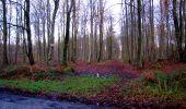 Trail Walk LONGPONT - en forêt de Retz_17_Longpont_etangs de la Ramee_AR - Photo 68