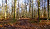 Trail Walk LONGPONT - en forêt de Retz_17_Longpont_etangs de la Ramee_AR - Photo 41
