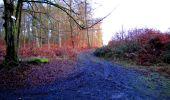 Trail Walk LONGPONT - en forêt de Retz_17_Longpont_etangs de la Ramee_AR - Photo 73