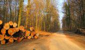Trail Walk LONGPONT - en forêt de Retz_17_Longpont_etangs de la Ramee_AR - Photo 61