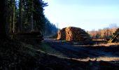Trail Walk LONGPONT - en forêt de Retz_17_Longpont_etangs de la Ramee_AR - Photo 83