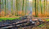 Trail Walk LONGPONT - en forêt de Retz_17_Longpont_etangs de la Ramee_AR - Photo 55