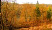 Trail Walk LONGPONT - en forêt de Retz_17_Longpont_etangs de la Ramee_AR - Photo 43