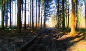 Trail Walk LONGPONT - en forêt de Retz_17_Longpont_etangs de la Ramee_AR - Photo 80
