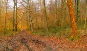 Trail Walk LONGPONT - en forêt de Retz_17_Longpont_etangs de la Ramee_AR - Photo 12