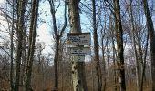Randonnée Marche SENTHEIM - Autour de Sentheim - Photo 4