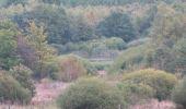 Trail Walk Sainte-Ode - Boucle - Forêts et plateaux- Tronçon 3 - Rechimont - Gives - Photo 4