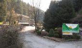 Randonnée Marche La Roche-en-Ardenne - Boucle - Forêts et plateaux - Tronçon 1 - La Roche-en-Ardenne - Laneuville-au-Bois - Photo 10