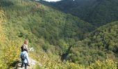 Trail Walk Houffalize - ESCAPARDENNE EISLECK TRAIL Etape 5 - Nadrin - La Roche-en-Ardenne - Photo 7
