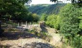Trail Walk Houffalize - ESCAPARDENNE EISLECK TRAIL Etape 5 - Nadrin - La Roche-en-Ardenne - Photo 4