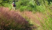 Trail Walk Houffalize - ESCAPARDENNE EISLECK TRAIL Etape 5 - Nadrin - La Roche-en-Ardenne - Photo 1