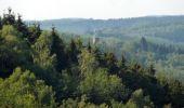 Trail Walk Houffalize - ESCAPARDENNE EISLECK TRAIL Etape 5 - Nadrin - La Roche-en-Ardenne - Photo 2