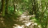 Trail Walk Houffalize - ESCAPARDENNE EISLECK TRAIL Etape 5 - Nadrin - La Roche-en-Ardenne - Photo 10