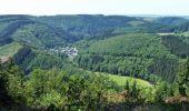 Trail Walk Houffalize - ESCAPARDENNE EISLECK TRAIL Etape 5 - Nadrin - La Roche-en-Ardenne - Photo 8