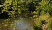 Randonnée Marche Houyet - La Lesse, Natura 2000 - Des sites qui valent le détour, Na07 - Photo 11