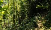 Randonnée Marche Houyet - La Lesse, Natura 2000 - Des sites qui valent le détour, Na07 - Photo 16