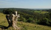 Randonnée Marche Houyet - La Lesse, Natura 2000 - Des sites qui valent le détour, Na07 - Photo 2