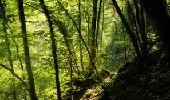 Randonnée Marche Houyet - La Lesse, Natura 2000 - Des sites qui valent le détour, Na07 - Photo 9