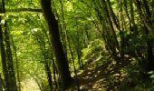 Randonnée Marche Houyet - La Lesse, Natura 2000 - Des sites qui valent le détour, Na07 - Photo 10