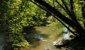 Randonnée Marche Houyet - La Lesse, Natura 2000 - Des sites qui valent le détour, Na07 - Photo 12