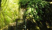 Randonnée Marche Houyet - La Lesse, Natura 2000 - Des sites qui valent le détour, Na07 - Photo 1