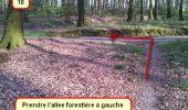 Trail Nordic's walk LANDEAN - CMN Françoise 13 - Photo 17