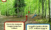 Trail Nordic's walk LANDEAN - CMN Françoise 13 - Photo 1