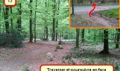 Trail Nordic's walk LANDEAN - CMN Françoise 13 - Photo 13