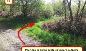 Trail Nordic's walk LANDEAN - CMN Françoise 13 - Photo 18