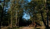 Randonnée V.T.T. MONTAIGUT-SUR-SAVE - Grand Tour VTT de la forêt de Bouconne - Photo 2