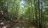 Randonnée Marche Saint-Hubert - Saint-Hubert - Circuit Natura 2000, des sites qui valent le détour - Lx16 - Photo 10