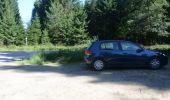 Randonnée Marche Saint-Hubert - Saint-Hubert - Circuit Natura 2000, des sites qui valent le détour - Lx16 - Photo 12