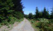 Randonnée Marche Saint-Hubert - Saint-Hubert - Circuit Natura 2000, des sites qui valent le détour - Lx16 - Photo 11