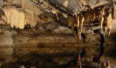 Trail Walk Rochefort - Nature - Le Belvédère de Han-sur-Lesse - Photo 15