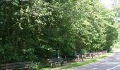 Trail Walk Rochefort - Nature - Le Belvédère de Han-sur-Lesse - Photo 1