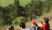 Trail Walk Rochefort - Nature - Le Belvédère de Han-sur-Lesse - Photo 4