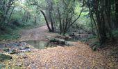 Randonnée Marche VERDUN-EN-LAURAGAIS - BDM le lac des Cammazes - Photo 5