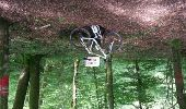 Trail Mountain bike COUTHENANS - La raie du cul depuis Couthenans - Photo 1