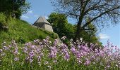Randonnée V.T.T. Beauraing - Nature : entre Pondrôme et Revogne - Photo 4