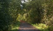 Trail Cycle Rochefort - Nature - Circuit cyclo à la découverte de Rochefort et des villages d''Eprave, Lessive et Villers - Photo 20