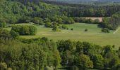 Trail Cycle Rochefort - Nature - Circuit cyclo à la découverte de Rochefort et des villages d''Eprave, Lessive et Villers - Photo 25